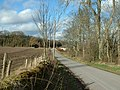 Rural Scene by East Kinnochtry - geograph.org.uk - 352341.jpg