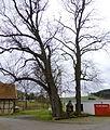 Rustenfelde Bildstock 01.jpg