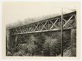 SBB Historic - 110 126 - Selvacciabrücke.tif