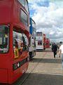 SM Coaches bus (LUI 5579), ex-London Transport T266 (GYE 266W), Showbus 2002.jpg