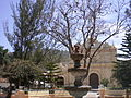 Sabanagrande principal park.JPG