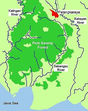 Sabangau National Park - Sabangau River and surrounding peat swamp forests