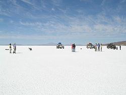 Bolivias oljeindustri forstatligas