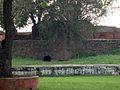 Salimgarh Fort 79.jpg