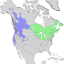 Salix lucida & lasiandra range map 1.png