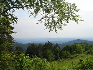 Sanok-Turka Mountains - Image: Salt mountains in the Eastern Carpathians