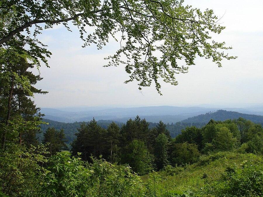 Sanok-Turka Mountains