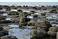 Saltburn Scar - geograph.org.uk - 414151.jpg