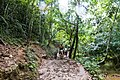 Samaná Province, Dominican Republic - panoramio (127).jpg