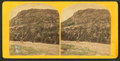 Sand Beach Mountain, by E. L. Allen.png