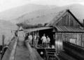 Sanger Flume House 1890s.png