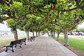 Santoña - walkway.jpg