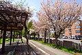 Sapporo Kita-ku Kita 26 Nishi 6-chome - panoramio (2).jpg