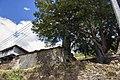 Sarzol, aldea de la parroquia de Herías (Illano, Asturias).jpg