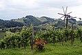 Sausal vineyard landscape.jpg