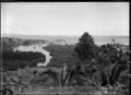 Scene looking over foliage, towards a coastline, including a boat berthed at a wharf, probably Fiji ATLIB 517541.png