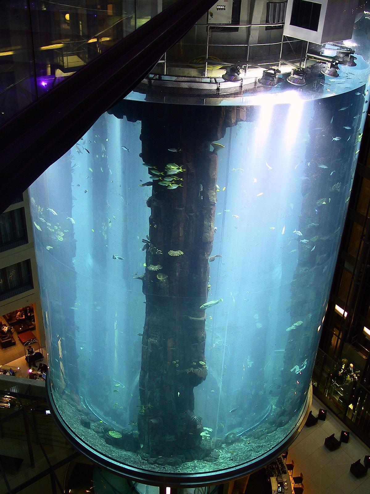 Sea Life Centre - Wikipedia