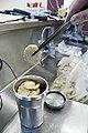 Seafood- FDA Lab 2908 (4494149455).jpg