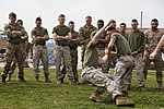 Security Force Marines conduct trilateral training during Lisa Azul 150312-M-XZ244-153.jpg