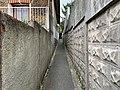 Sentier Chardons - Rosny-sous-Bois (FR93) - 2021-04-16 - 1.jpg