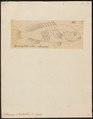 Serranus ouatalibi - - Print - Iconographia Zoologica - Special Collections University of Amsterdam - UBA01 IZ12900199.tif