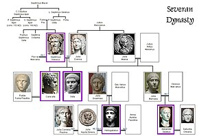 Severan dynasty family tree.jpg
