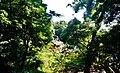 Shizuoka Schrein Kunozan tosho-gu 45.jpg