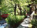 Shuzenji onsen 20110919 A.jpg