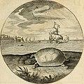 Silenus Alcibiadis, sive, Proteus - vitae humanae ideam, emblemate trifariàm variato, oculis subijciens (1618) (14745810054).jpg