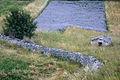 Slovenia DSC 0646 (15194145430).jpg