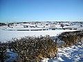 Snowy Fields Near Polnoon - geograph.org.uk - 1651577.jpg