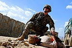 Soldiers maintain readiness during mass-casualty exercise DVIDS259919.jpg