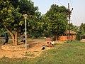Sora houses inside Centurion University, Uppalada, Rayagada district, Odisha, India.jpg