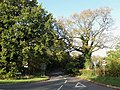 Spatham Lane - geograph.org.uk - 1573458.jpg