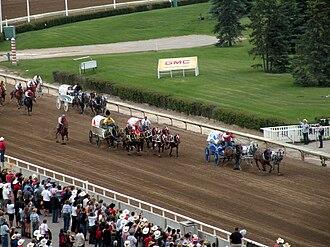 World Professional Chuckwagon Association - Chuckwagon racing at the Calgary Stampede.