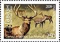 Stamps of Tajikistan, 014-09.jpg