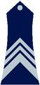 Stariji narednik Republika Srpska 1992.png