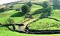 Start of the Bridleway Across Kisdon Hill - geograph.org.uk - 242335.jpg
