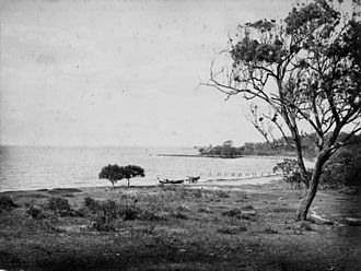 Woody Point, Queensland - Woody Point shoreline, ca. 1876