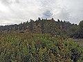 Steelhead Falls (15177045659).jpg