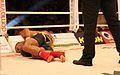 Steko´s Fight Night -Zirkus Krone 2011 697.JPG