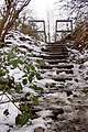 Steps up to the Dove Valley Trail - geograph.org.uk - 1153675.jpg