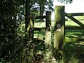 Stile at No Mans Green - geograph.org.uk - 891991.jpg