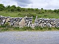 Stile in dry stonewall - Cappagh Townland - geograph.org.uk - 833885.jpg