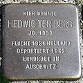 Stolperstein Delmenhorst - Hedwig ter Berg (1933).JPG