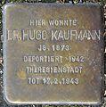 Stolpersteine Krefeld, Dr. Hugo Kaufmann (Nordwall 75).jpg