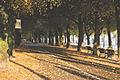 Strandvägen Bike Path (15741704567).jpg