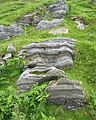 Striated rock - geograph.org.uk - 200699.jpg