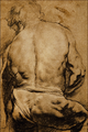 Study of a Male Figure Seen... - Sir Peter Paul Rubens.png