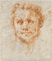 Study of a Man's Head MET DT4330.jpg